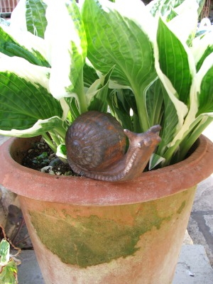Small Cast Iron Snail