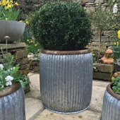 Large Dolly Planter