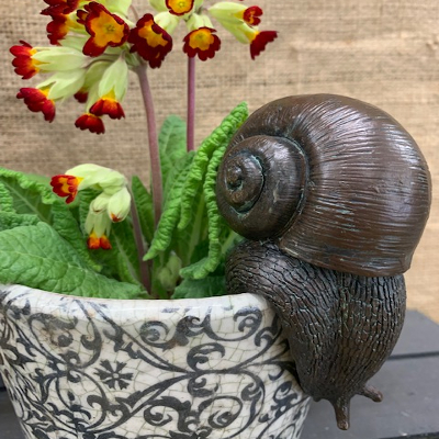 Pot Hanging Snail