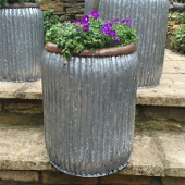 Medium Dolly Planter